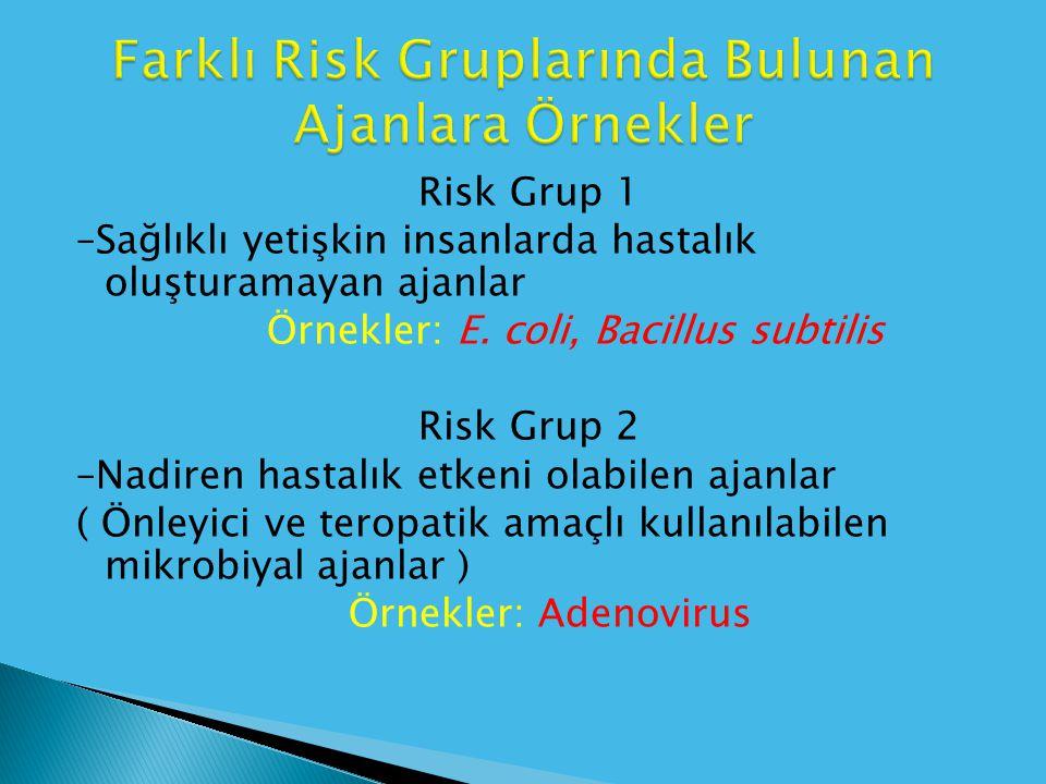 Farklı Risk Gruplarında Bulunan Ajanlara Örnekler