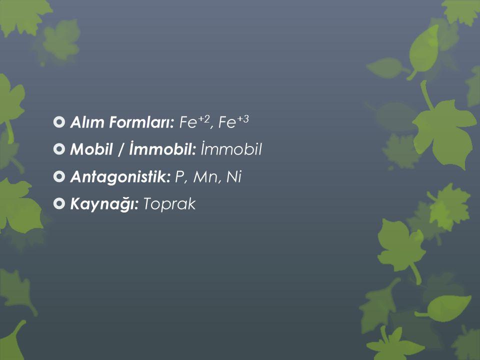 Alım Formları: Fe+2, Fe+3 Mobil / İmmobil: İmmobil Antagonistik: P, Mn, Ni Kaynağı: Toprak