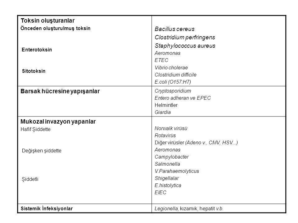 Clostridium perfringens Staphylococcus aureus