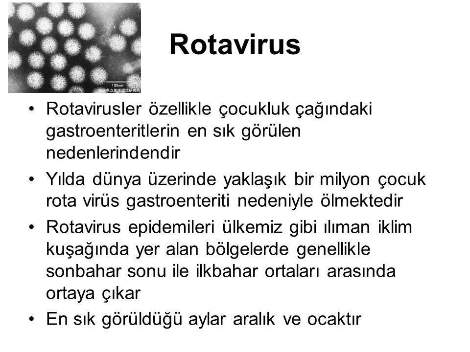 Rotavirus Rotavirusler özellikle çocukluk çağındaki gastroenteritlerin en sık görülen nedenlerindendir.