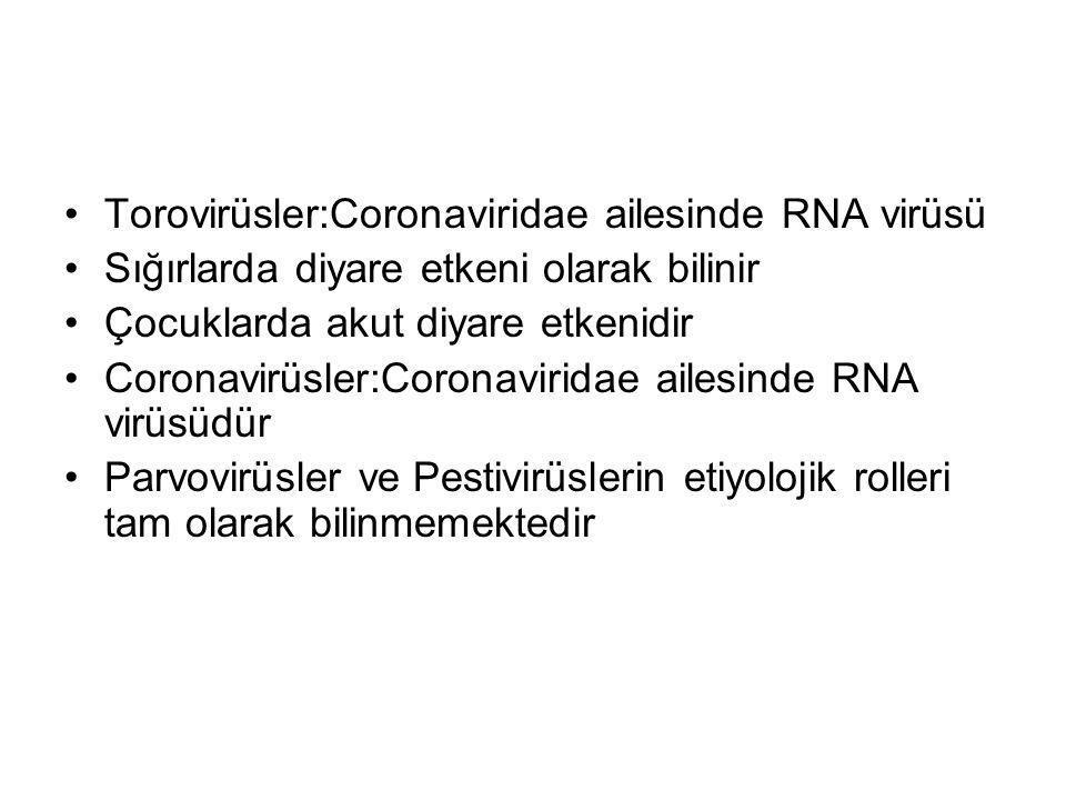 Torovirüsler:Coronaviridae ailesinde RNA virüsü