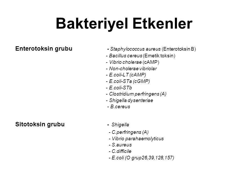 Bakteriyel Etkenler Enterotoksin grubu - Staphylococcus aureus (Enterotoksin B)