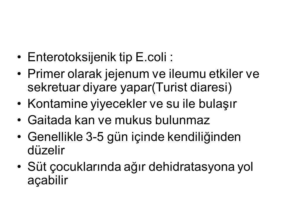Enterotoksijenik tip E.coli :