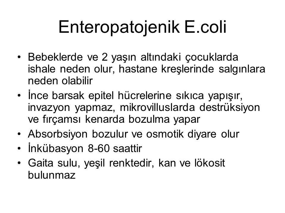 Enteropatojenik E.coli
