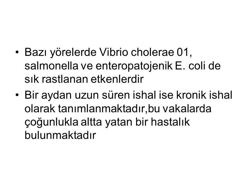 Bazı yörelerde Vibrio cholerae 01, salmonella ve enteropatojenik E