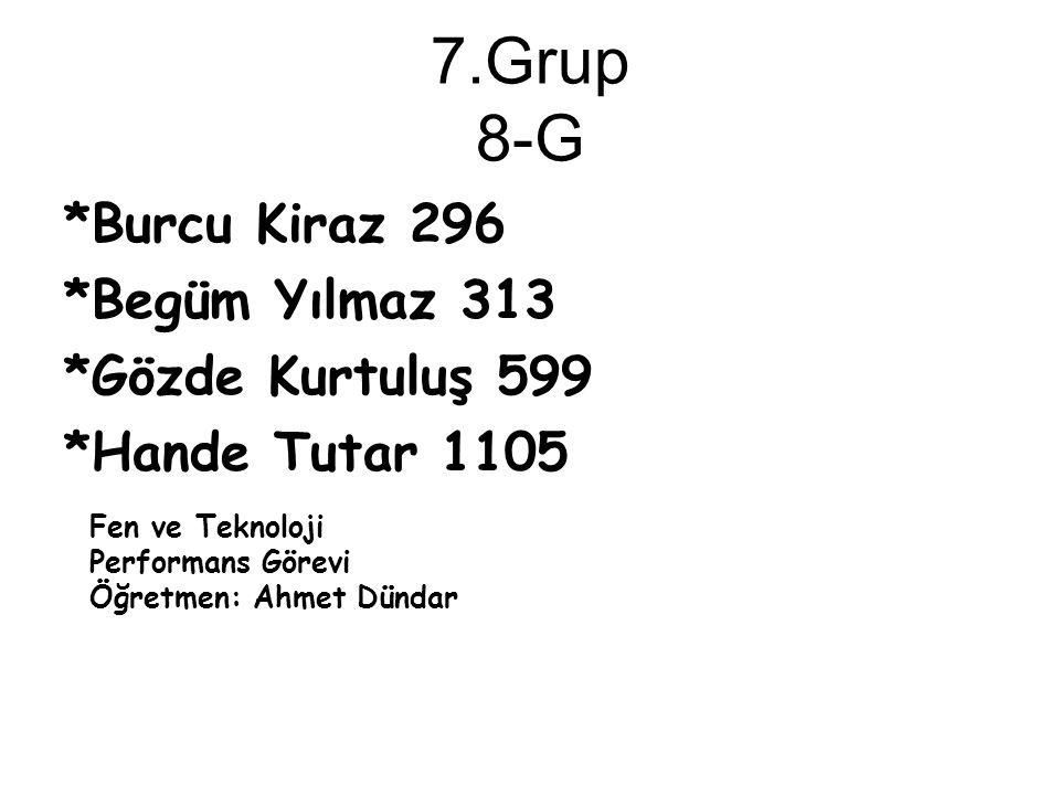 7.Grup 8-G *Burcu Kiraz 296 *Begüm Yılmaz 313 *Gözde Kurtuluş 599