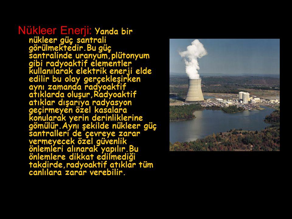 Nükleer Enerji: Yanda bir nükleer güç santrali görülmektedir