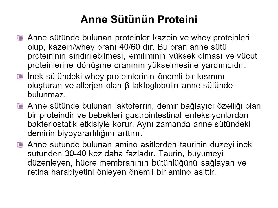 Anne Sütünün Proteini