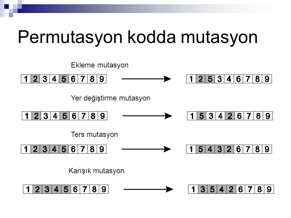 Permutasyon kodda mutasyon