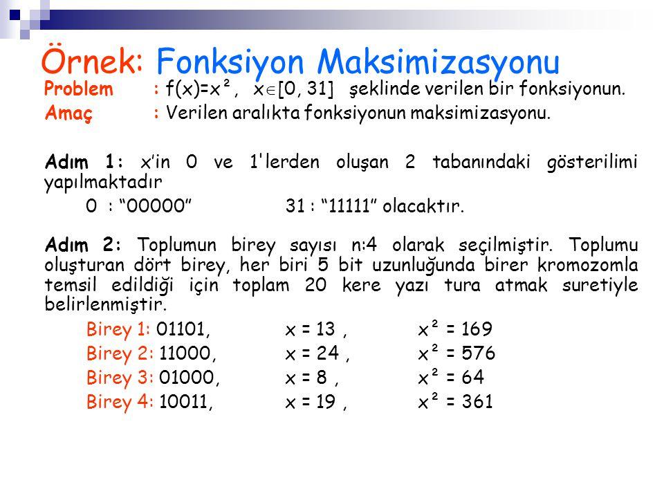 Örnek: Fonksiyon Maksimizasyonu