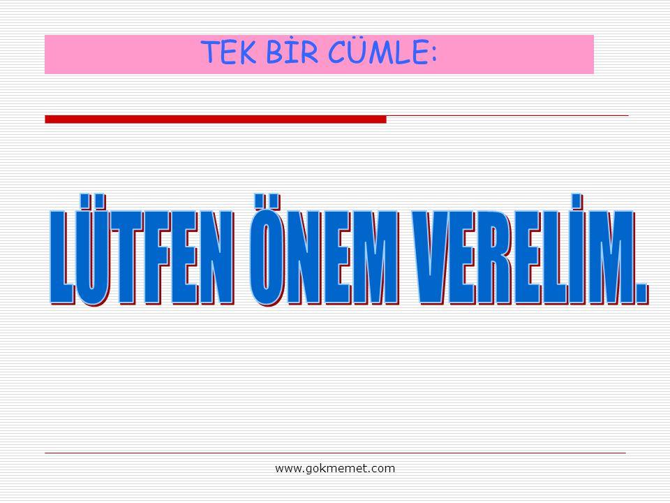 TEK BİR CÜMLE: LÜTFEN ÖNEM VERELİM. www.gokmemet.com