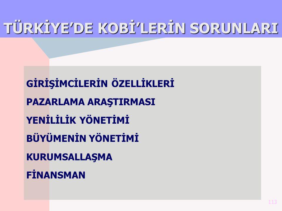 TÜRKİYE'DE KOBİ'LERİN SORUNLARI