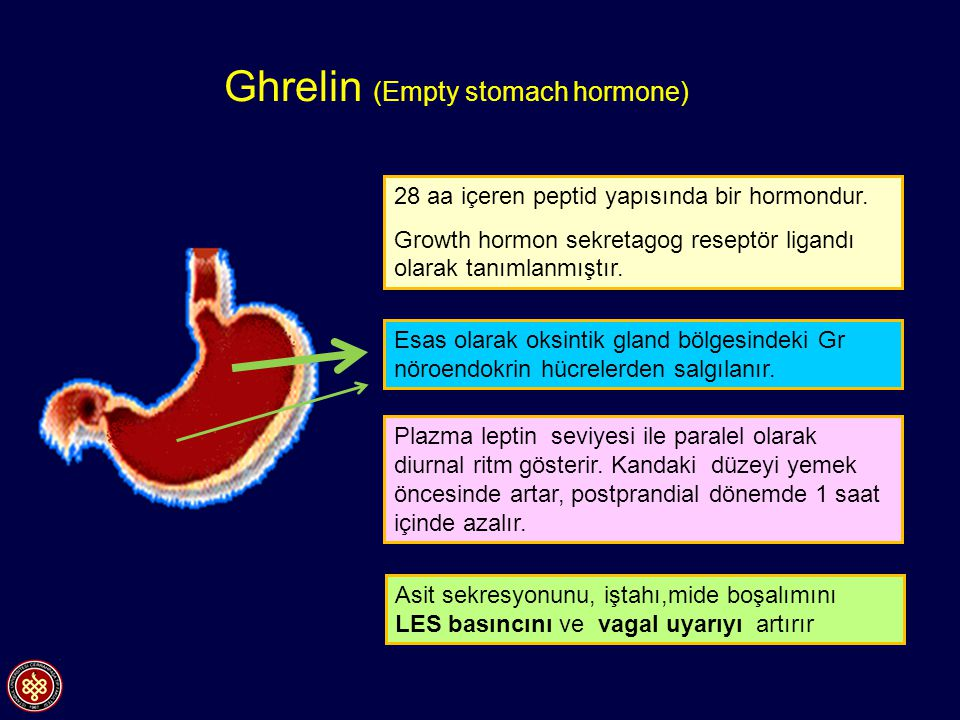Ghrelin (Empty stomach hormone)