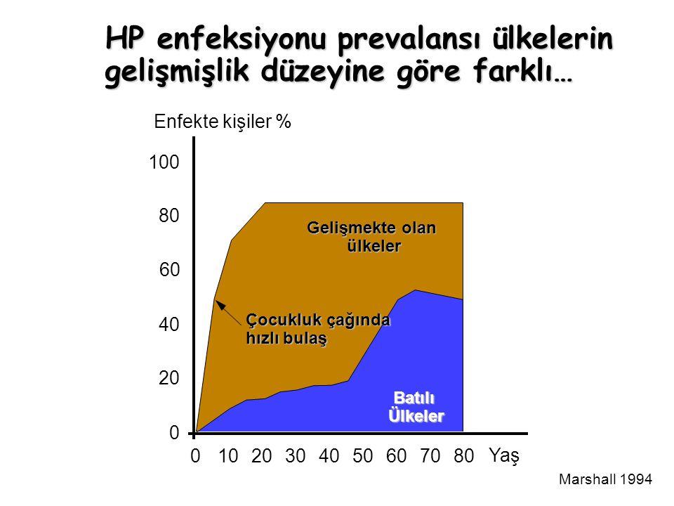 HP enfeksiyonu prevalansı ülkelerin gelişmişlik düzeyine göre farklı…