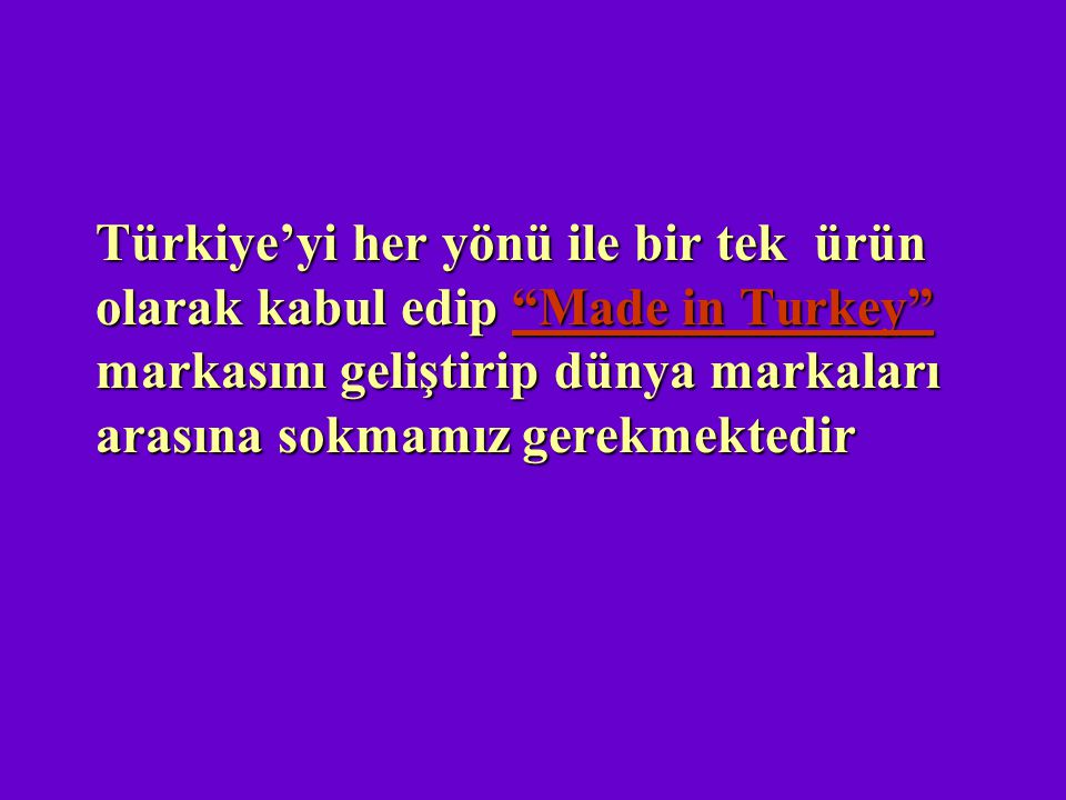 Türkiye'yi her yönü ile bir tek ürün olarak kabul edip Made in Turkey markasını geliştirip dünya markaları arasına sokmamız gerekmektedir