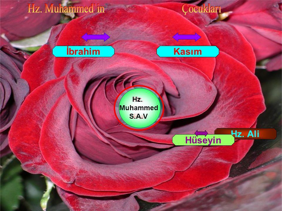 Hz. Muhammed`in Çocukları