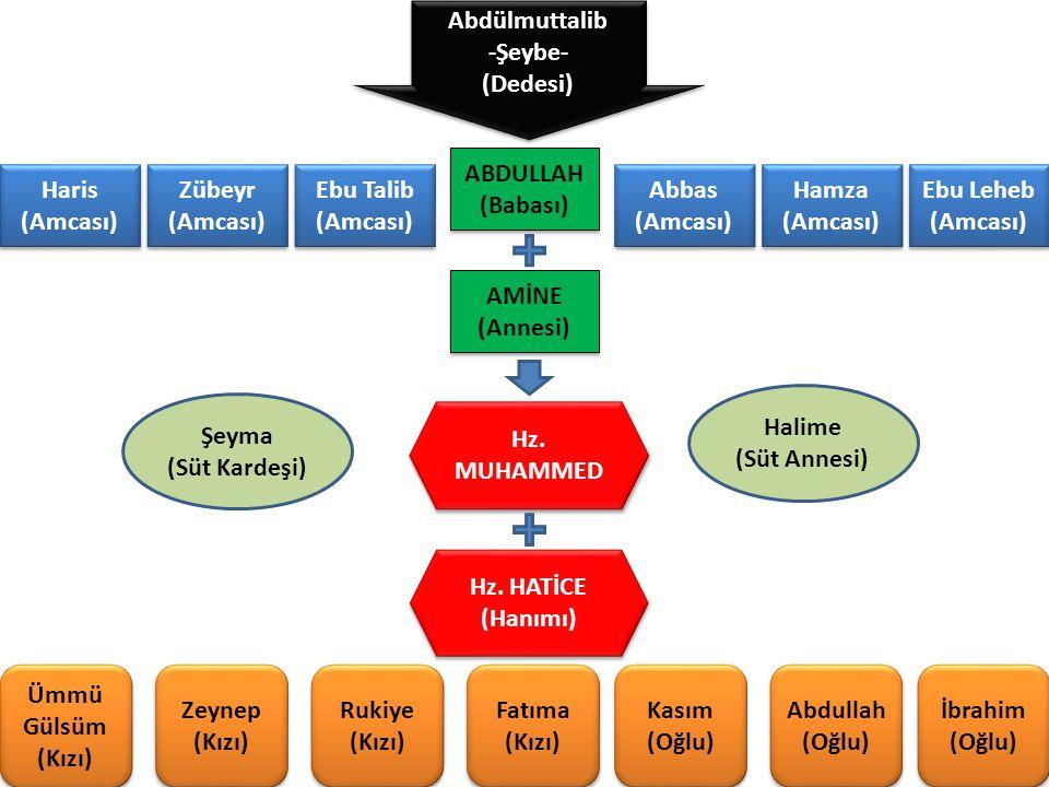 Abdülmuttalib -Şeybe- (Dedesi) ABDULLAH. (Babası) Haris. (Amcası) Zübeyr. (Amcası) Ebu Talib.