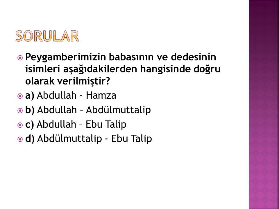 Sorular Peygamberimizin babasının ve dedesinin isimleri aşağıdakilerden hangisinde doğru olarak verilmiştir