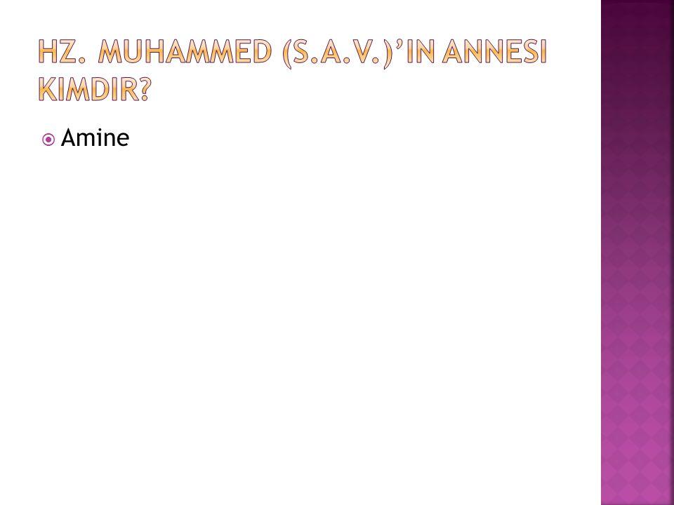 Hz. Muhammed (s.a.v.)'in annesi kimdir
