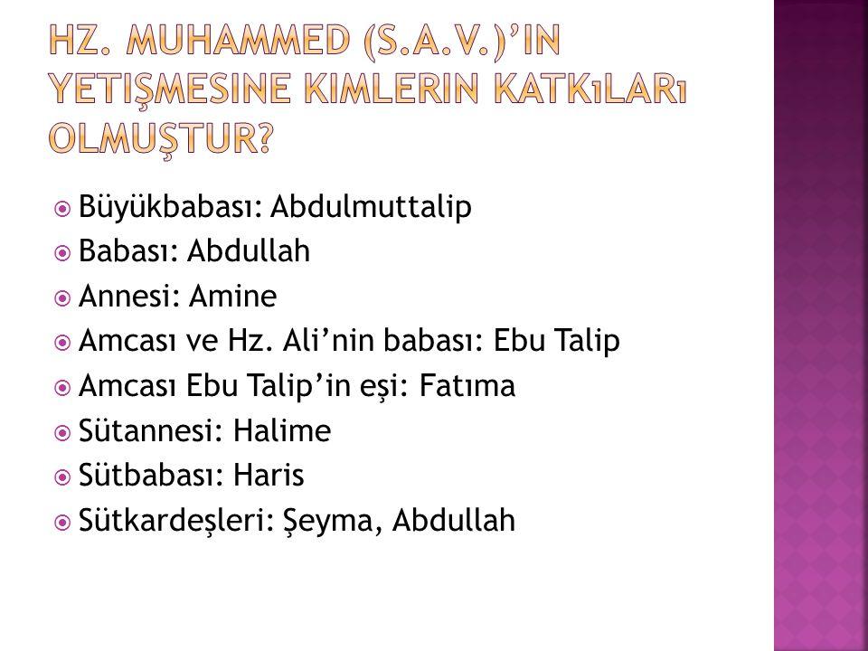 Hz. Muhammed (s.a.v.)'in yetişmesine kimlerin katkıları olmuştur
