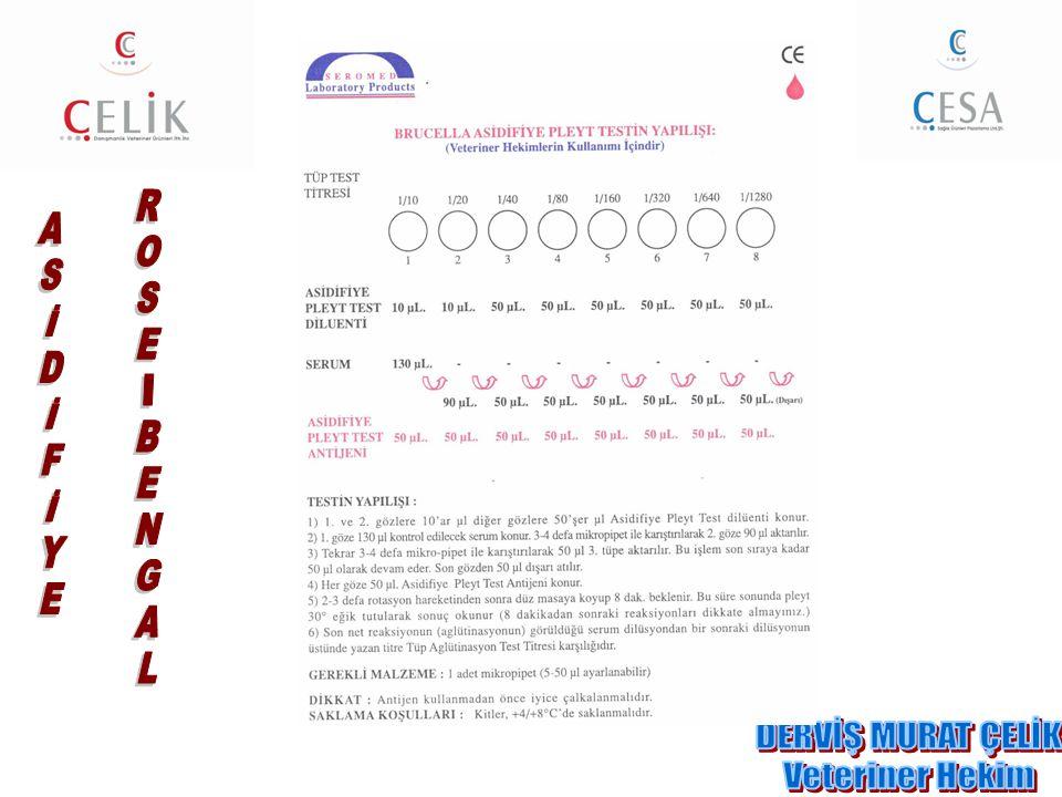 ASİDİFİYE ROSE-BENGAL DERVİŞ MURAT ÇELİK Veteriner Hekim
