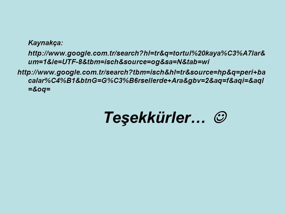 Kaynakça: http://www. google. com. tr/search