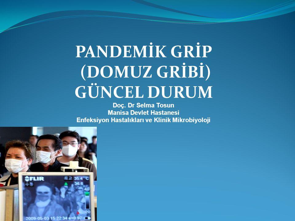 PANDEMİK GRİP (DOMUZ GRİBİ) GÜNCEL DURUM Doç. Dr Selma Tosun