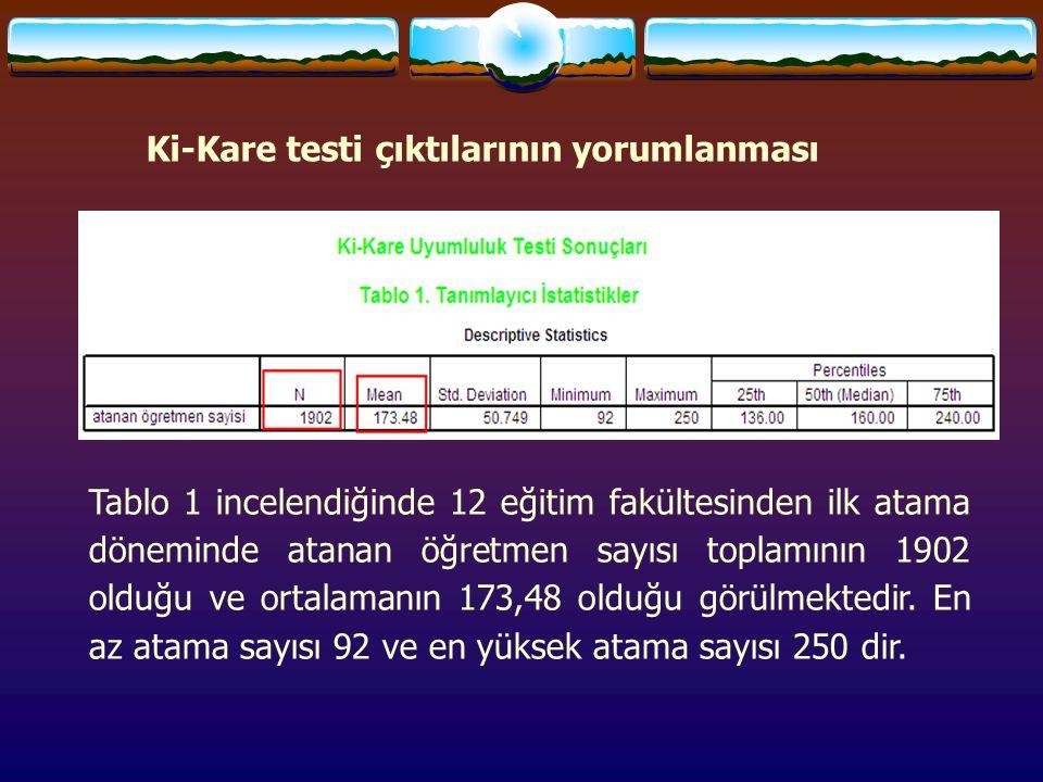 Ki-Kare testi çıktılarının yorumlanması