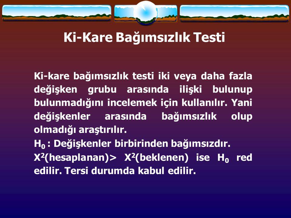 Ki-Kare Bağımsızlık Testi