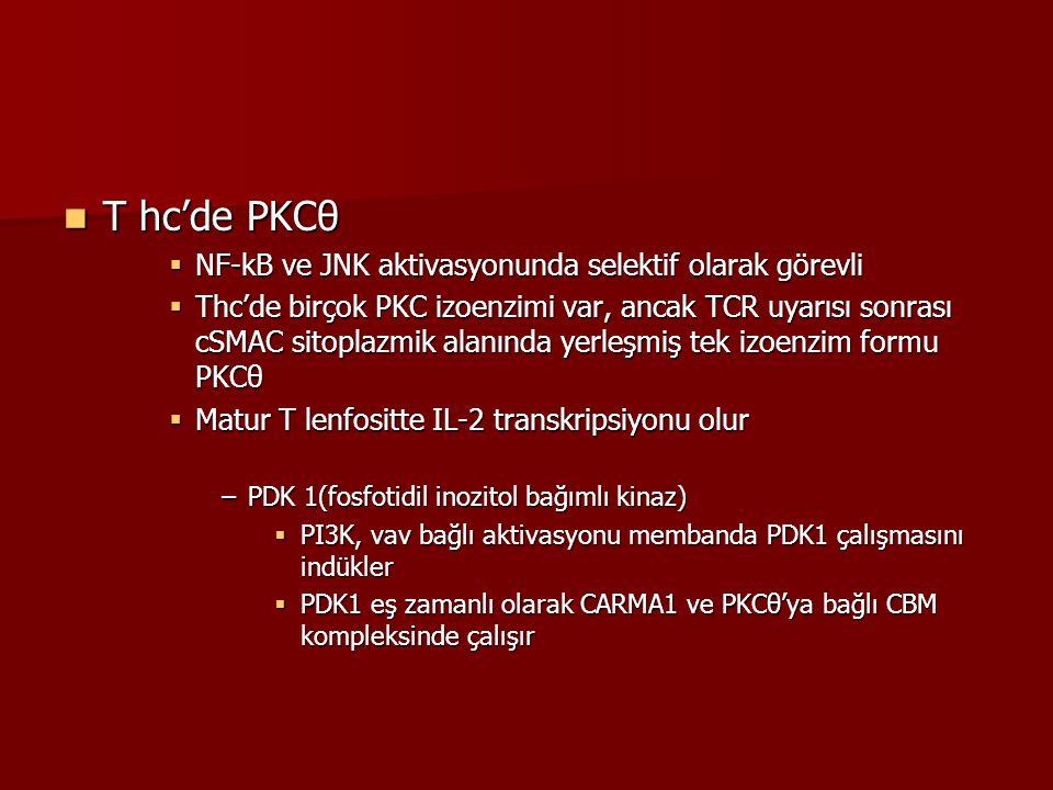 T hc'de PKCθ NF-kB ve JNK aktivasyonunda selektif olarak görevli