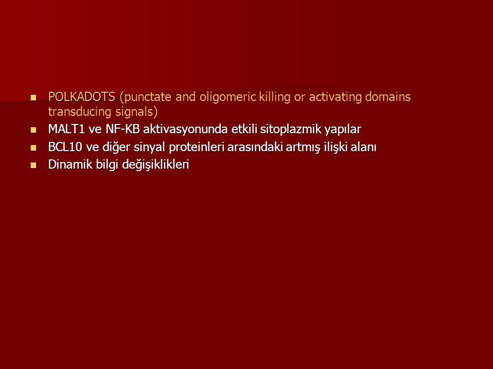 POLKADOTS (punctate and oligomeric killing or activating domains transducing signals)