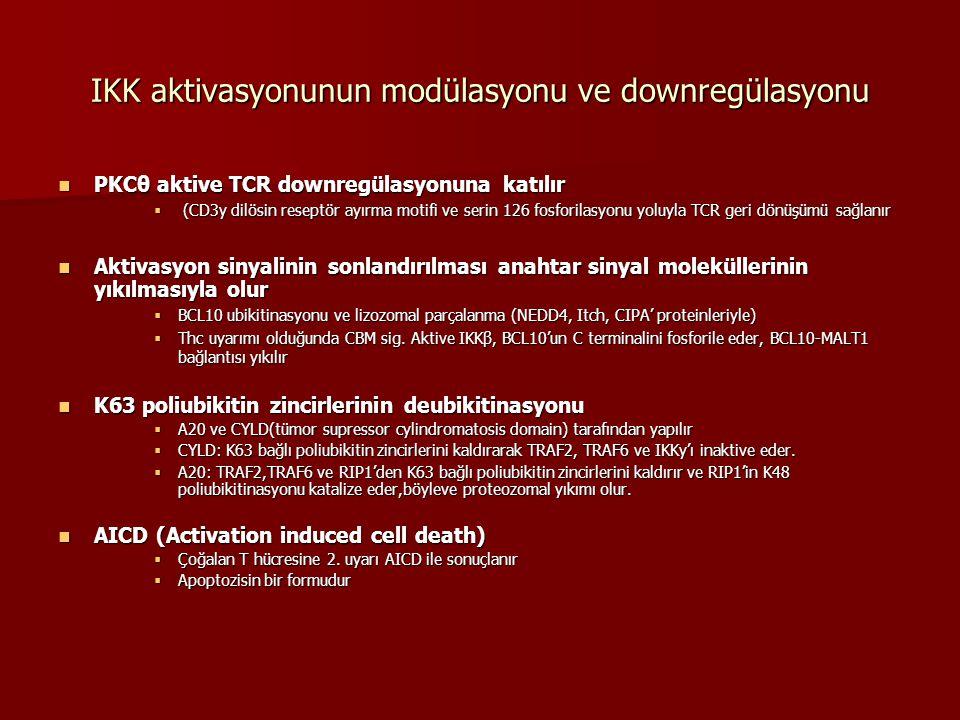 IKK aktivasyonunun modülasyonu ve downregülasyonu