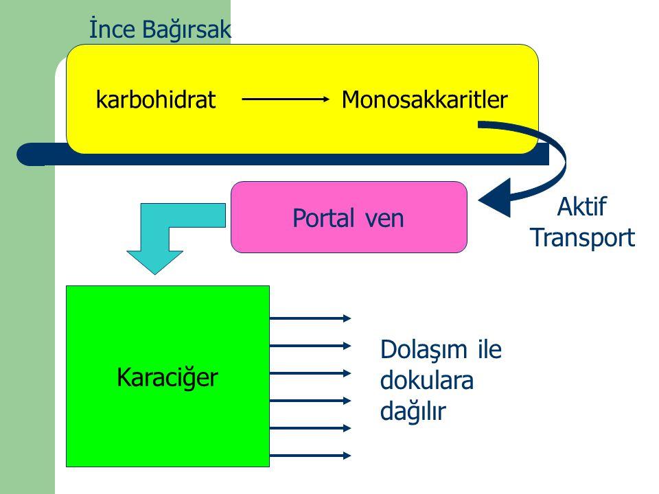 karbohidrat Monosakkaritler