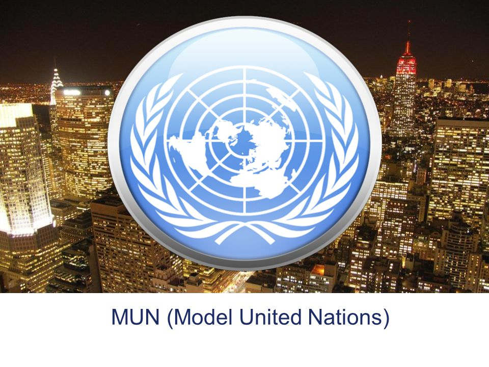 model united nations glossary