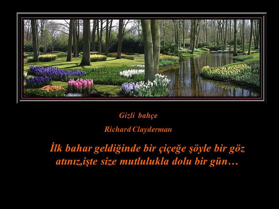 Gizli bahçe Richard Clayderman.