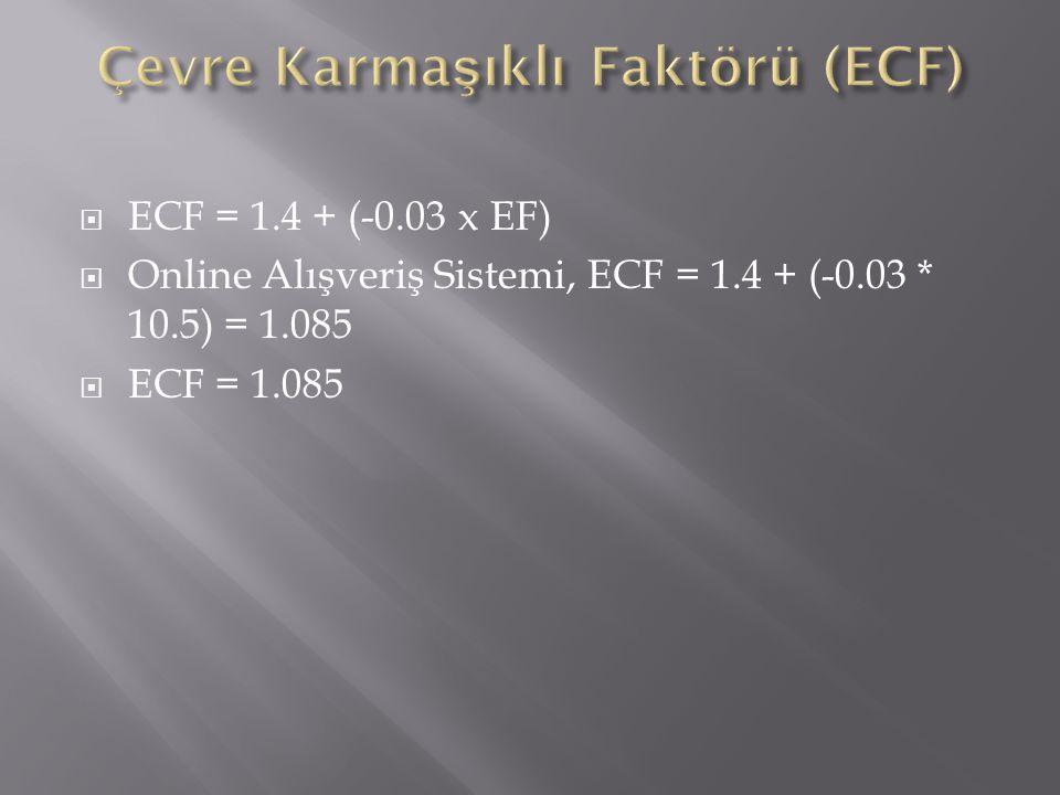 Çevre Karmaşıklı Faktörü (ECF)