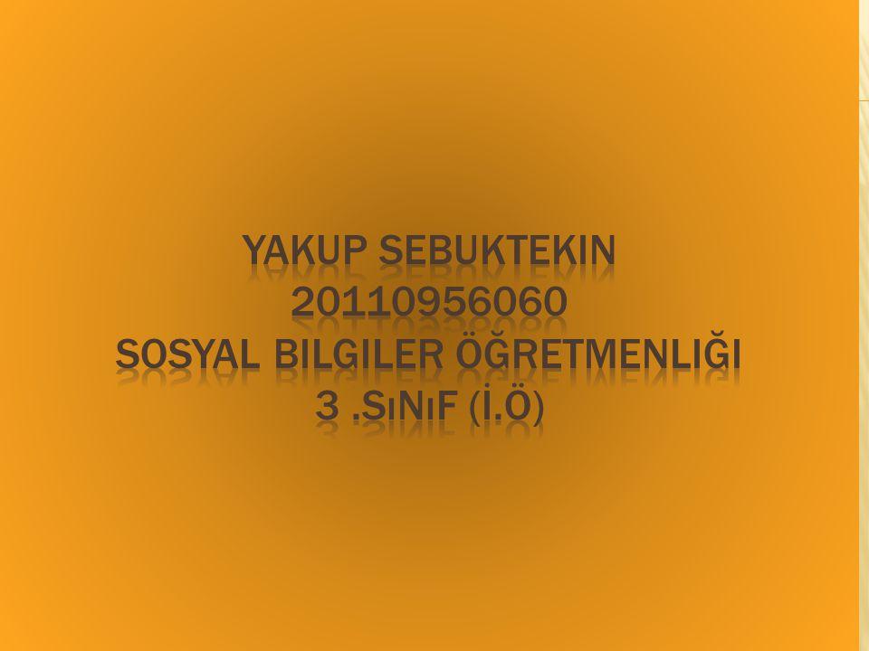 Yakup Sebuktekin 20110956060 Sosyal Bilgiler Öğretmenliği 3. Sınıf (İ