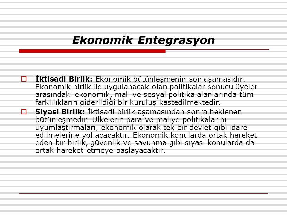 Ekonomik Entegrasyon