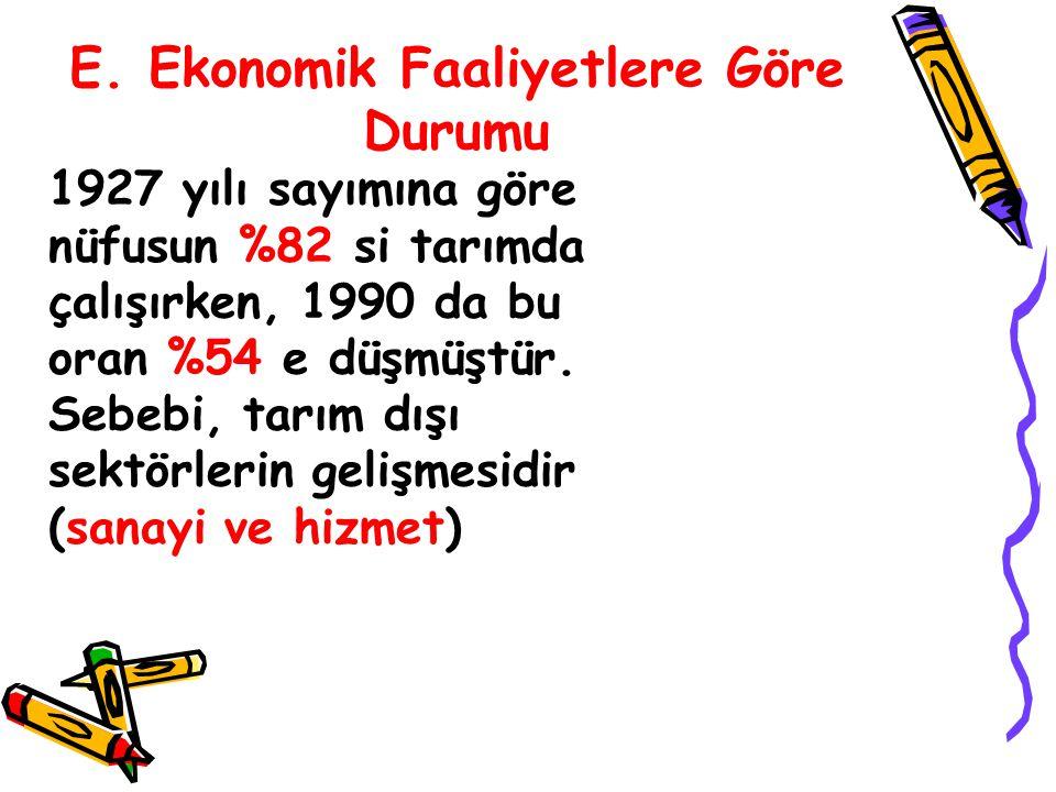 E. Ekonomik Faaliyetlere Göre Durumu