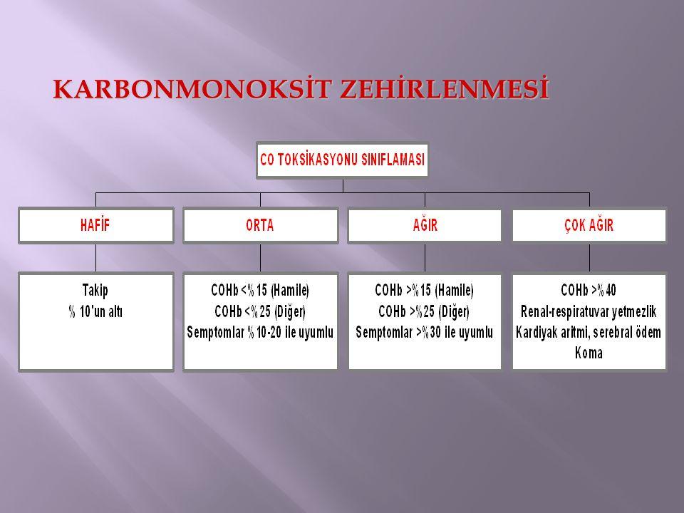 KARBONMONOKSİT ZEHİRLENMESİ