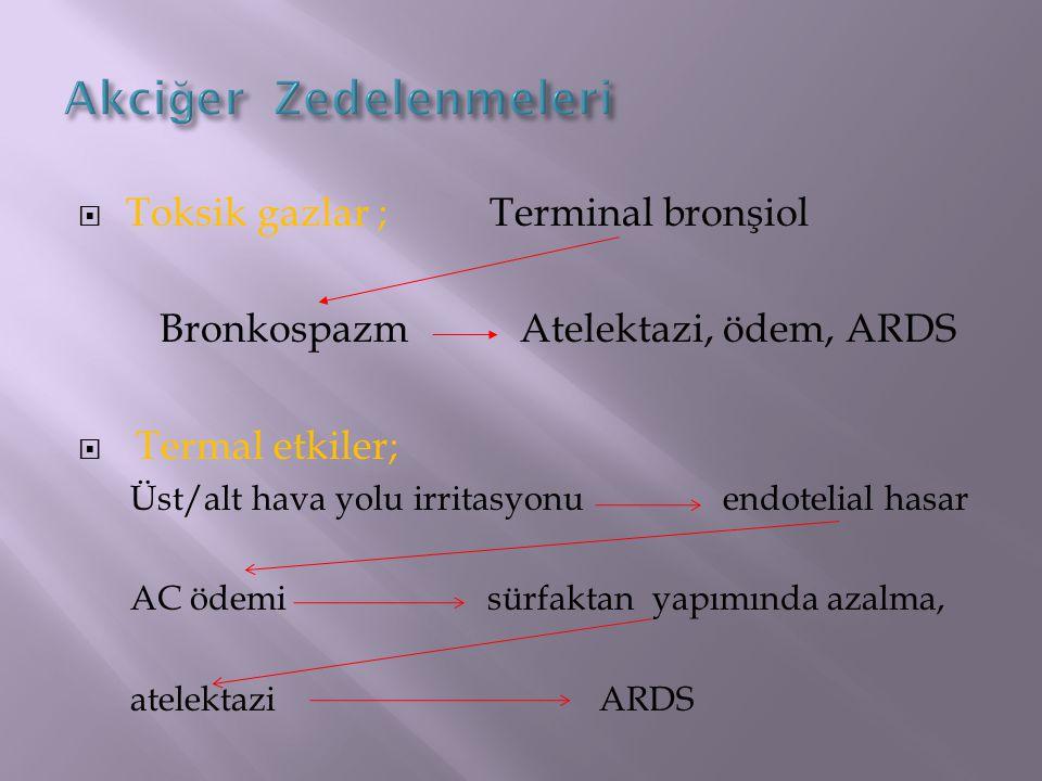 Akciğer Zedelenmeleri