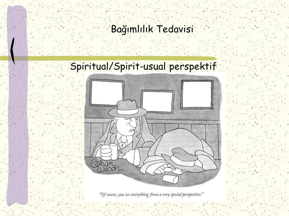 Bağımlılık Tedavisi Spiritual/Spirit-usual perspektif