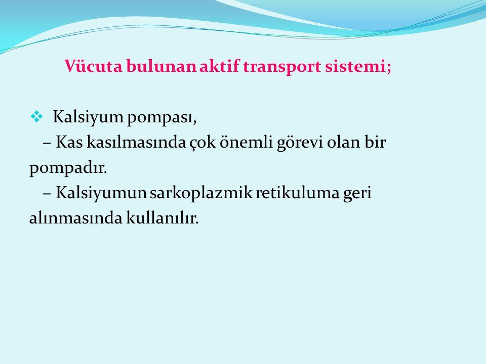 Vücuta bulunan aktif transport sistemi;