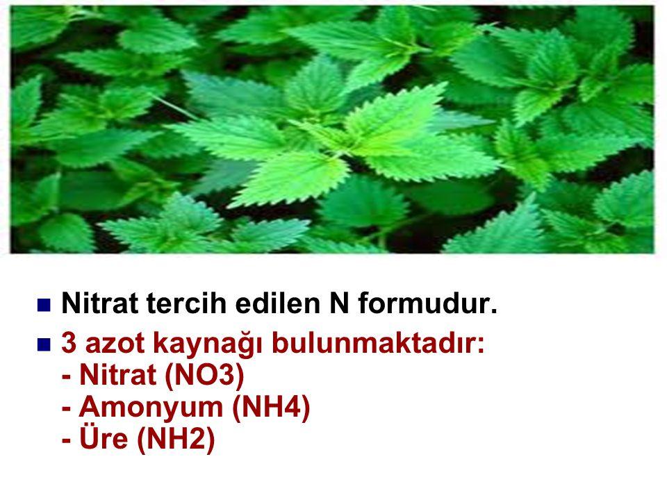 Nitrat tercih edilen N formudur.