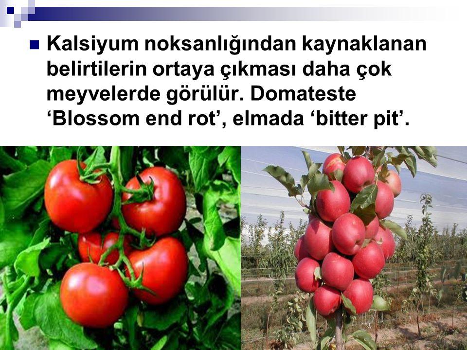 Kalsiyum noksanlığından kaynaklanan belirtilerin ortaya çıkması daha çok meyvelerde görülür.