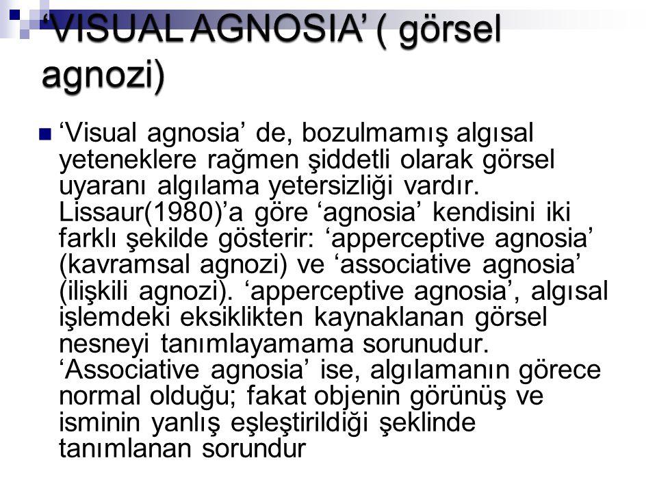 'VISUAL AGNOSIA' ( görsel agnozi)