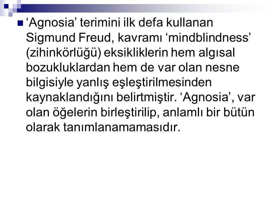 'Agnosia' terimini ilk defa kullanan Sigmund Freud, kavramı 'mindblindness' (zihinkörlüğü) eksikliklerin hem algısal bozukluklardan hem de var olan nesne bilgisiyle yanlış eşleştirilmesinden kaynaklandığını belirtmiştir.