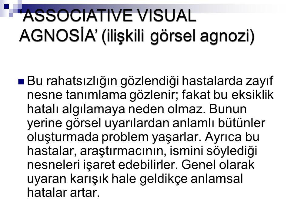 'ASSOCIATIVE VISUAL AGNOSİA' (ilişkili görsel agnozi)