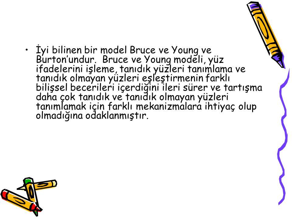 İyi bilinen bir model Bruce ve Young ve Burton'undur