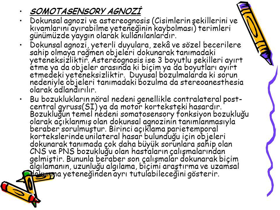 SOMOTASENSORY AGNOZİ
